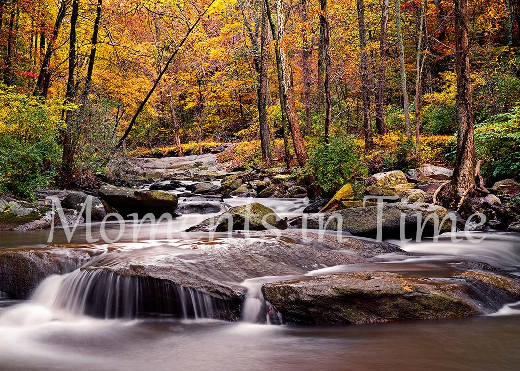 Autumn_Peace