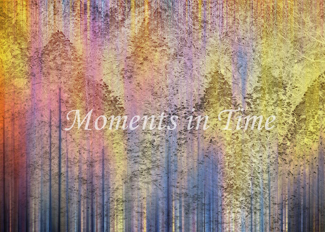 -Enchantment