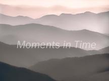 Mountain-Mist