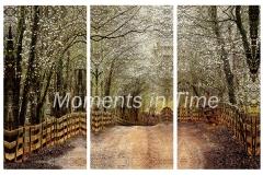 Timeless-triptych