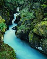 c60-Avalanche_Creek